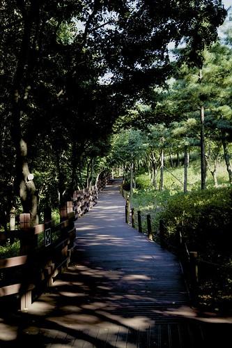 Walkway ...