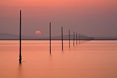 Pilgrim's Way (Wayland.) Tags: sunset way holyisland lindisfarne pilgrims takeaview landscapephotographeroftheyear