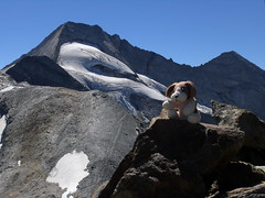 Stardoug's Glacier Experience (bookhouse boy) Tags: mountains alps tirol berge alpen tyrol 2012 hintertux tuxertal kaserer frauenwand kasererschartl sommerbergalm stardoug kleinerkaserer weisewand 19august2012