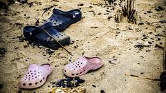 crocs on a beach (RGL_Photography) Tags: beach newjersey sand unitedstates jetty seawall shore pilings jerseyshore jetties longbranch adamsstreet steelpilings woodenseawall