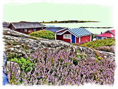 Trången (photographer Hans Wessberg AB) Tags: camera summer lighthouse se sweden sverige halmstad fyr tylösand halland ljung stugor tylön båtvik trången municipalityofhalmstad