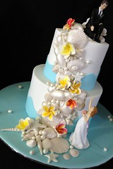 Shells and Starfish (Cake Desire Gold Coast) Tags: ocean wedding sea shells beach cake gold coast starfish frangipanis