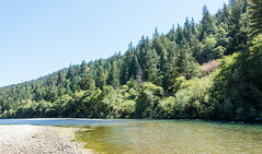 Bend in the South Fork of the Eel River (BlueVoter - thanks for 1.4M views) Tags: eelriver river fiume fleuve redwood sequoia avenueofthegiants