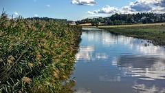 Salta river/ Salta, rett fr den nr Skjebergkilen (Bjorn-Erik Skjoren) Tags: nature river norway water onlythebestofnature