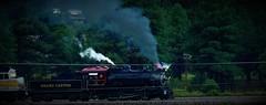 Laying on the Speed! 08/26/16 (Douglas H Wood) Tags: 29 gcrr williams arizona steam locomotive railroad trains smokey
