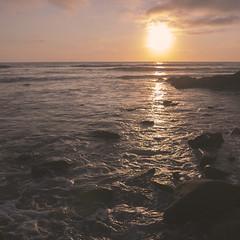 San Diego Day Trip (japheth-crawford) Tags: sunsetcliffsnationalpark sunsetcliffs sunset ocean water beach lowtide
