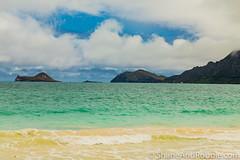 20160822(Canon EOS 6D)-00025 (ShaneAndRobbie) Tags: hawaii oahu usa america eastcoast windward kailua beach