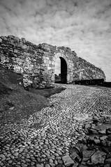 Stoneway to... (Walimai.photo) Tags: salvatierra de tormes salamanca spain black white blanco negro byn bw branco preto blanc noir nikon d7000 18105 espaa camino way stone piedra castle castillo chateau