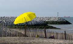 Yellow (Lucin Reyns) Tags: cadzand pentaxk3 hdpentax2040mmlimited paraplu umbrella sea beach zeeuwschvlaanderen zeeuwsvlaanderen netherlands nederland