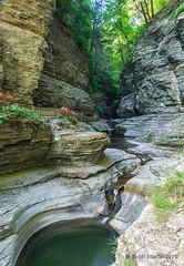 Watkins Glen Trail_0006 (sugarzebra) Tags: watkinsglen fingerlakes newyork waterfalls stream river longexposure timeexposure trail hiking statepark canon singhray