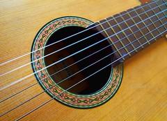 You Can Play My Guitar (DigitalLUX) Tags: macro guitar strings instrument macromondays wood music fret stringedinstrument