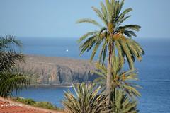 Punta Gaviota (yayolorenzo) Tags: la gomera