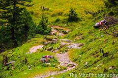 IMG_3398 (The Mitz Photography) Tags: gams grünersee hochschwab mariazell maryclan murmerl mädels nebel pilgern sommer steinbock wandern