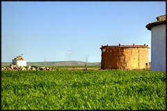 Palomares - Pedraza de Campos (Caesar Images) Tags: espaa paisajes landscapes spain palencia palomares pedrazadecampos