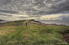 Where the Wildlife Roams Free [Explored, Thank You] (Steve _ C) Tags: uk sea sky wales clouds canon islands gerald sully 2012 17105 giottos 5dmk thesundayclub stevechatman