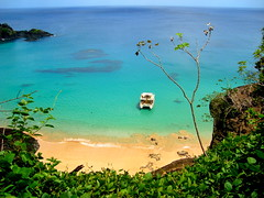 Praia do Sancho (Antonio Arlan) Tags: vacation praia beach beautiful strand de vacances paradise le di belle bella per plage fernandodenoronha paraiso spiaggia vacanze paradiso  schnen paradisiaque    paradiesferien