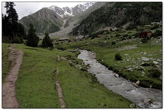 trek to Beyal camp, Fairy meadows (zafaryaab) Tags: travel pakistan mountain flower girl beautiful rose photography fort sony lakes palace shangrila area gb northern rakaposhi hunza baba yasin rama nagar diran passu gilgit tattu saifulmaluk baltit altit naltar deosai nangaparbat skardu baltistan sadpara astore fairymeadows kachura sheosar babusar satpara ishkoman lulusar godai ghizar punyal borith khaplu chilim ghanche hoopar atatabad
