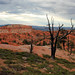 Bryce Canyon Queens Loop Trail.jpg