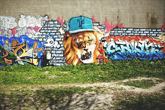 F ( CHRISTIAN ) Tags: art wall graffiti nikon montral tag lion f mur homa mtlguessed gwim