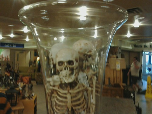 Skeletons In A Vase