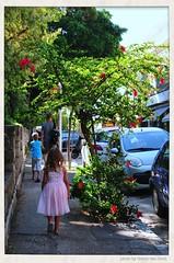 The town of Rhodes (Gerry van Gent) Tags: islands greece oldtown rhodes mandraki rhodesknightcastle