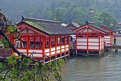 Itsukushima Shrine in the rain toward Daisho-in, Miyajima  (Anaguma) Tags: japan landscape shrine hiroshima miyajima