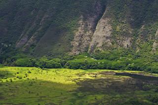 Waipio Valley Lookout 4
