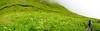 DSC_8737-DSC_8741 (Sivaraj Mathi) Tags: nikon himalaya hemkund valleyofflowers vof nikond5000 himayam