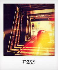"""#DailyPolaroid of 7-6-16 #253 • <a style=""""font-size:0.8em;"""" href=""""http://www.flickr.com/photos/47939785@N05/28267278592/"""" target=""""_blank"""">View on Flickr</a>"""