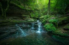 Little Paradise (@hipydeus) Tags: waterfall wasserfall stream bach moos moss farn germany enchanted nature