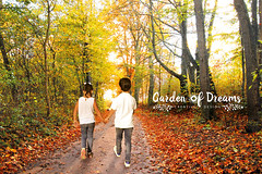 Autumn scenery (Garden_of_Dreams) Tags: air autumn blue change colorful colourful environment fall foliage forest garden grass harvest landscape leaf leaves maple nature novosibirsk park path rainy red scenic season seasons siberia sky sun tree trees walk water wet wood woods yellow
