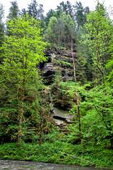 160524_161901_AB_4605 (aud.watson) Tags: europe czechrepublic bohemia decindistrict hrenska riverkamenice kamenicegorge edmundgorge gorge ravine river water rocks rockformation cliffs