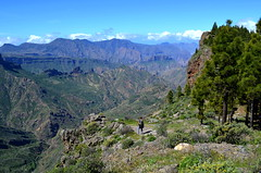 Walking in the Canary Islands (BuzzTrips) Tags: canaryislands walking hiking wheretogohikinginthecanaryislands canarianarchipelago islands routes paths landscapes travel scenery grancanaria tejeda