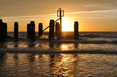 The new day (Kirkleyjohn) Tags: beach groyne sea seaside seashore silhouette reflection seascape seagull suffolk sunrise sun light bright lowestoft lowestoftbeach sunshine