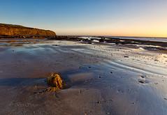 Warming light (Through Bri`s Lens) Tags: yorkshire robinhoodsbay beachlowtide seaweed sand lowtide brianspicer canon5dmk3 canon1635f4