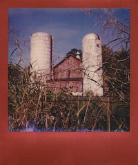 (ltpaperhouse) Tags: ltpaperhouse mint 670s polaroid theimpossibleproject 600 film red frame color analogue vintagecamera instantphotography lance trussell