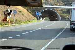 IMG_2526 (ryancarter2012) Tags: tunnel ferrieriers menorca road trafic travel