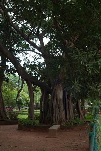 Bengaluru 2016 - Indira Gandhi Musical Fountain Park - DSC07665.jpg