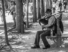 Gaitero (cmarga28) Tags: gaitero hombre persona man musico madrid people gaita foto photography nikon digital raw d750 urbano ciudad