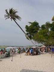 P2230546 (Gareth's Pix) Tags: playablanca baru colombia playa