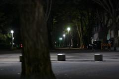 2016924 (atmo1966) Tags: digitalphotography nikon nikond40 ainikkor50mmf14 nagoya aichi nightphotography