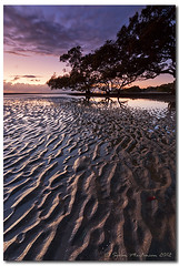 Of course you found it in the last place you looked. If you hadn't found it you'd still be looking (danishpm) Tags: sunrise canon eos sand australia wideangle qld ripples aus mangroves 1020mm manfrotto sigmalens nudgee southeastqueensland nudgeebeach eos450d 450d sorenmartensen hitechgradfilters 09ndreversegradfilter