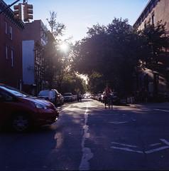 Oops (DeShaun Craddock) Tags: newyorkcity 6x6 brooklyn mediumformat landscape analogphotography filmphotography portra400 kodakportra400 analoguephotography rolleiflexautomatmx rolleiflexautomatk4a rolleiflextype4