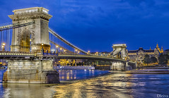 Budapest, vista clasica del Puente de las Cadenas (dleiva) Tags: bridge light color caf horizontal bar night river outdoors photography noche calle arquitectura europa europe hungary monumento restaurante budapest central ciudad nopeople palace viajes peste mujeres suspensionbridge royalty thepast danuberiver hombres baslica fotografa hungra chainbridge airelibre puentedelascadenas adulto capitalcities colorimage culturahngara patiodeedificio ciudadescapitalesdleivadomingoleivacity