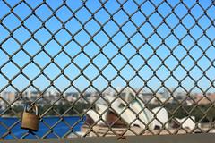 IMG_6266 (Ezekiel_25:17) Tags: city history sign ferry state flag sydney australia nsw operahouse harbourbridge sydneyharbourbridge sydneycity thecoathanger