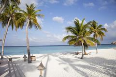 IMG_5736 (Marc Aurel) Tags: ocean sea beach strand island hotel meer indianocean palm resort insel palmtree maldives palma palme spiaggia isola atoll maldive malediven veligandu indischerozean maldiveislands coralisland indik dhivehiraaje rasdhooatoll koralleninsel 5dmarkii eos5dmarkii lakshadweepsea laccadivesea veliganduislandresort rossatoll lakkadivensee isolacorallina rasduatoll