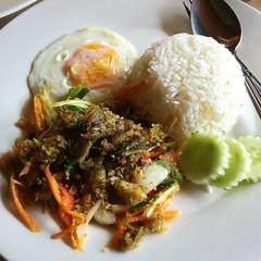 ข้าวยำปลาสลิดไข่ดาว | Spicy Crispy Gourami Salad With Fried Egg And Rice @ ครูเบลล่า | Kru Bella