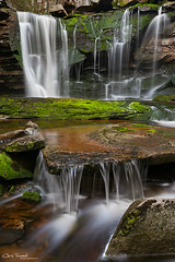 April Showers Bring... Waterfalls! ([Chris Tennant]) Tags: statepark nature water rock forest 1 moss spring stream hiking steps wv westvirginia waterfalls appalachia tuckercounty elakala shaysrun potomachighlands 5dmkii christennantphotography
