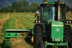 Making horse and cow food (Let Ideas Compete) Tags: county tractor green field john yummy colorado yum farm farming machine boulder delicious machinery co hay agriculture bales bale deere baler baling
