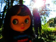 It's a Shiny Sunny Day!